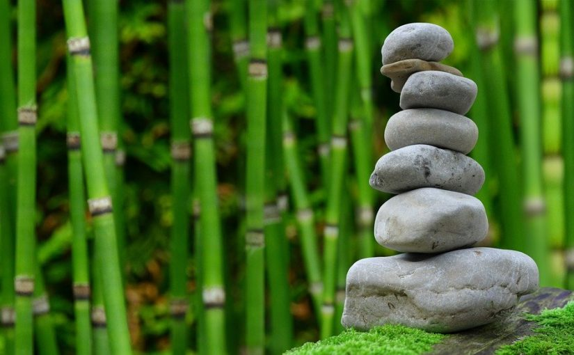 Piękny oraz schludny zieleniec to zasługa wielu godzin spędzonych  w jego zaciszu w toku pielegnacji.